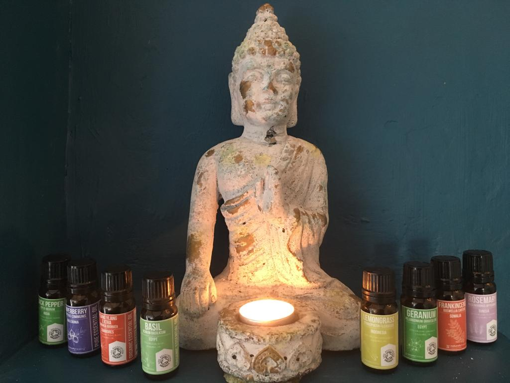 natural therapies industry